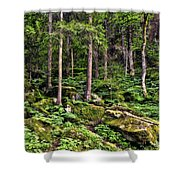Triberg Forest Shower Curtain