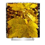 Tribute To Autumn Shower Curtain