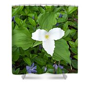 Trillium - White Beauty Shower Curtain