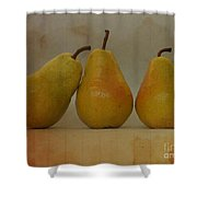 Trio Of Pears Shower Curtain