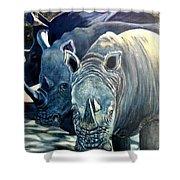 Trio Of Rhino Shower Curtain