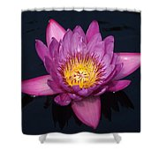 Tripple C - Color Changing Center... Shower Curtain
