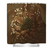 Trollius Stamen Macro Shower Curtain