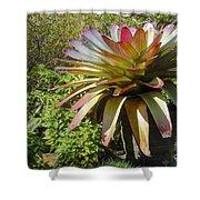 Tropical Bromeliad Shower Curtain