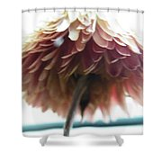 Tropical Dreaming  Shower Curtain