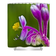 Tropical Flower Detail Shower Curtain