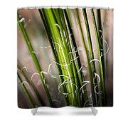 Tropical Grass Shower Curtain