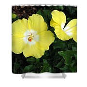 Tropical Hibiscus - Bonaire Wind 02 Shower Curtain