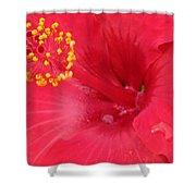 Tropical Hibiscus - Trinidad Wind 01 Shower Curtain