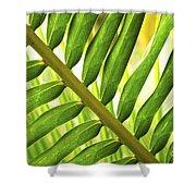 Tropical Leaf Shower Curtain by Elena Elisseeva