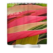 Tropical Leaves Abstract 3 Shower Curtain
