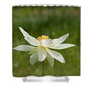 Tropical Lotus Flower Shower Curtain