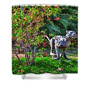 Tropical Mountain Lion Shower Curtain