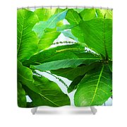 Tropical Noni Leaves Shower Curtain