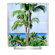 Tropical Palm Trees In Hawaii Shower Curtain