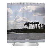 Tropical Palms And Clouds Shower Curtain