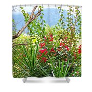 Tropical Red Against Cool Mountain Mists Shower Curtain