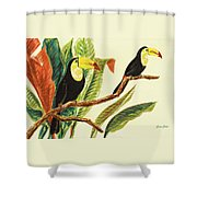 Tropical Toucans II Shower Curtain