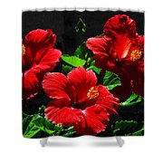 Tropical Trio Shower Curtain