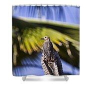 Tropical Woodpecker Shower Curtain