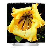 Tropical Yellow Shower Curtain