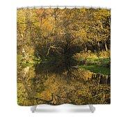 Trout Run Creek Fall 2 Shower Curtain