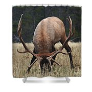 Truly Horney Shower Curtain by Bob Christopher