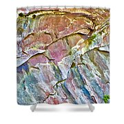 Trumpet Abstract Shower Curtain
