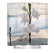 White Trumpet-shaped Flowers At Dana Point Beach California  Shower Curtain