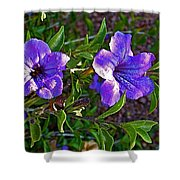 Trumpet Vine In Apache Junction-arizona   Shower Curtain