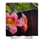 Trumpet Vine With Friend Shower Curtain