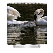 Trumpeter Song Shower Curtain