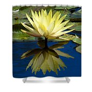 Truth Reflected Shower Curtain