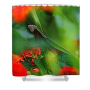 Trying To Hide Praying Mantis Shower Curtain by Raymond Salani III