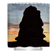 Faces In Rock Shower Curtain