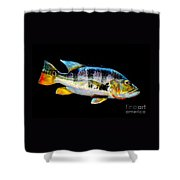 Tucunare-peacock Bass Shower Curtain