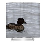 Tufted Duck Shower Curtain