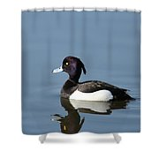 Tufted Shower Curtain