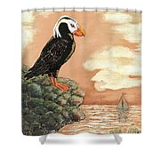 Tufted Puffin At Dusk Shower Curtain