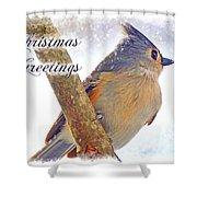 Tufted Titmouse Christmas Card Shower Curtain