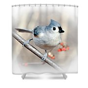 Tufted Titmouse Love  Shower Curtain