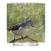 Tufted Titmouse With Decorations Shower Curtain
