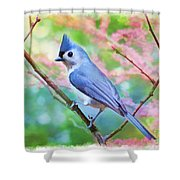 Tufted Titmouse With Spring Booms - Digital Paint II Shower Curtain