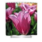 Tulip Angel Shower Curtain