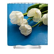 Tulip Flowers Over Blue Shower Curtain