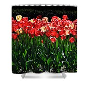 Tulip Forest Shower Curtain