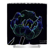 Tulip Glowing In The Moonlight Shower Curtain