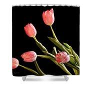 Tulip Happy Shower Curtain