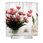 Tulip Shower Curtain by Jeanette Korab