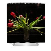 Tulip Mania 17 Shower Curtain